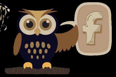owl fb icon 2